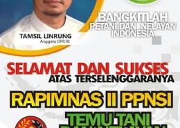 Baliho Rapimnas II PPNSI TL