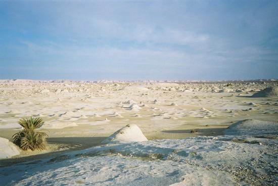 gurun pasir putih mesir 3